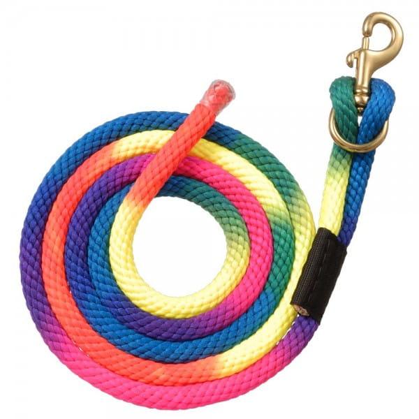 Rainbow Führstrick mit Brass Bolt Snap