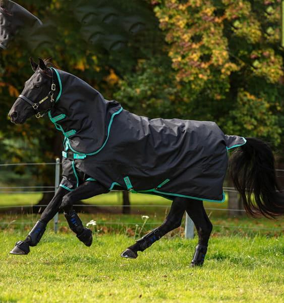 Horseware Amigo Hero 900 Plus 100G