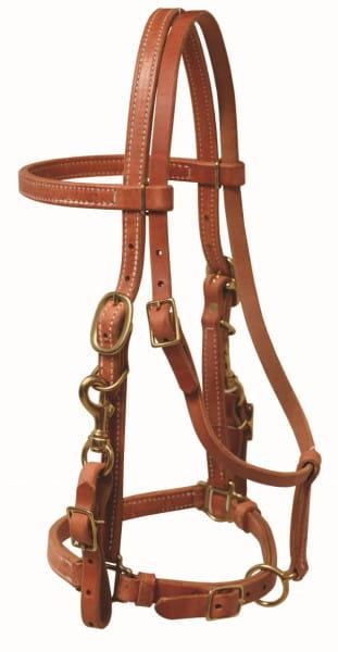 Ultimate Cowboy Gear Leder Halter Bridle