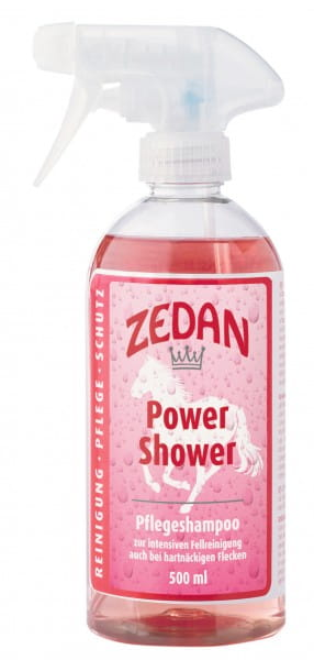 Zedan Power Shower