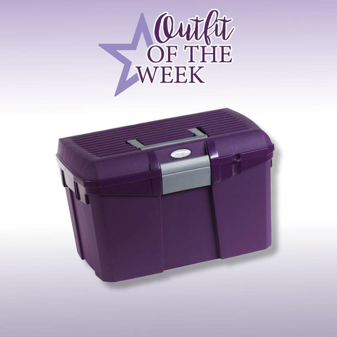 Norton Putzbox violet/grau
